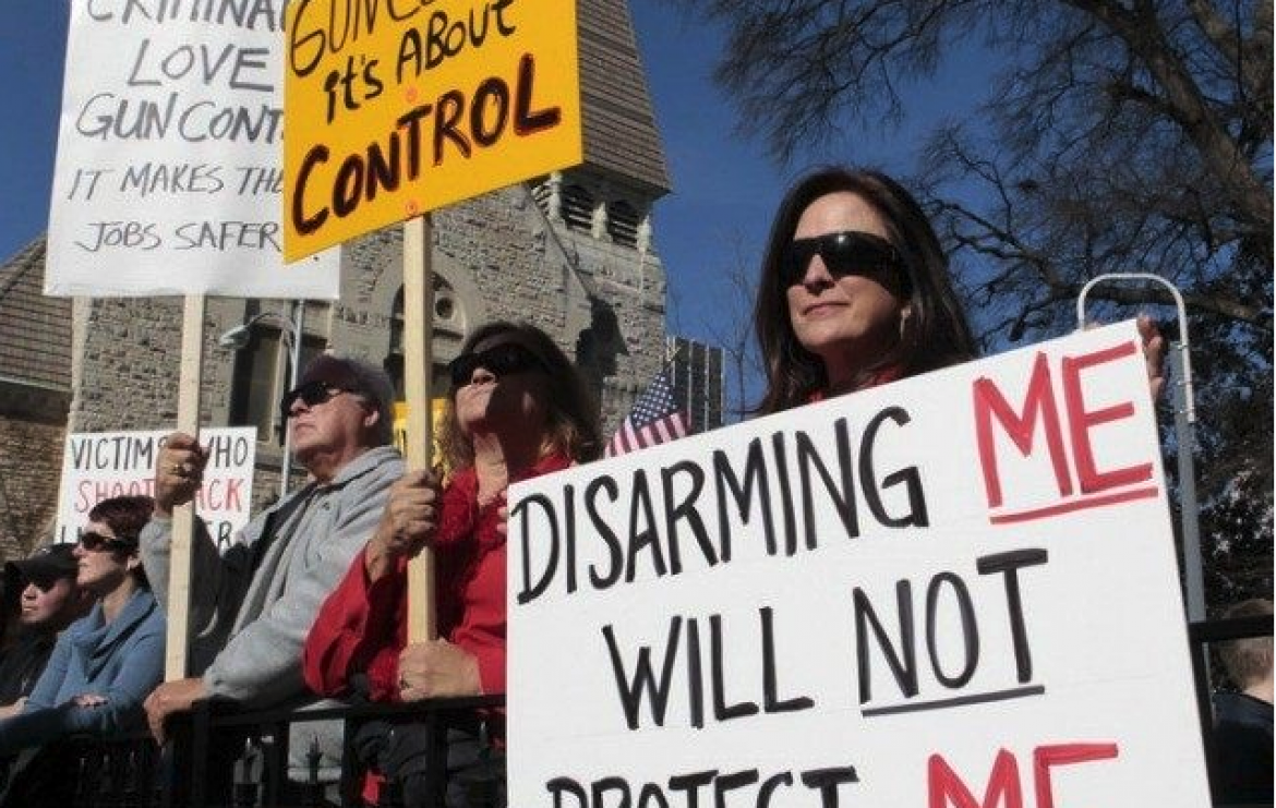 'Veto Gunmageddon' group seeks to amend California Constitution